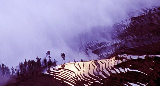 Reisterrassen Von Yuanyang in Die schönsten Reisterrassen Asiens