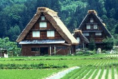 Shirakawago in