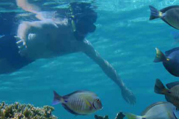 Malediven Urlaub in Malediven-Urlaub mit Inselhüpfen und im Gästehaus der Einheimischen
